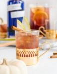 Fall-Gin-Sangria-Empress-1908-Gin-Cocktail-Recipe