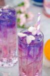 Rose Lemonade Cocktail Image with Empress 1908 Gin